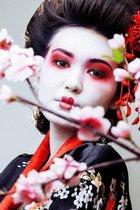 DP® Diamond Painting pakket Geisha 02 formaat 60 x 90 cm - Volledige bedekking met vierkante steentjes