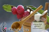 Saunageur Opgiet Wintergreen 30ml