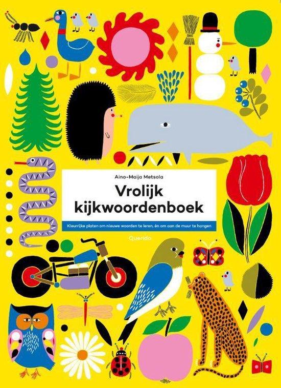 Vrolijk kijkwoordenboek - Aino-Maija Metsola  