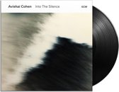 Into The Silence (Vinyl) (LP)