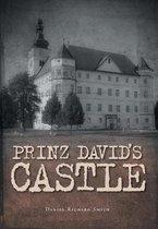 Prinz David's Castle