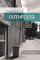 Pieces of America