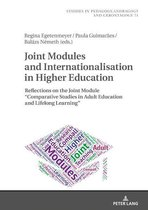 Joint Modules and Internationalisation in Higher Education