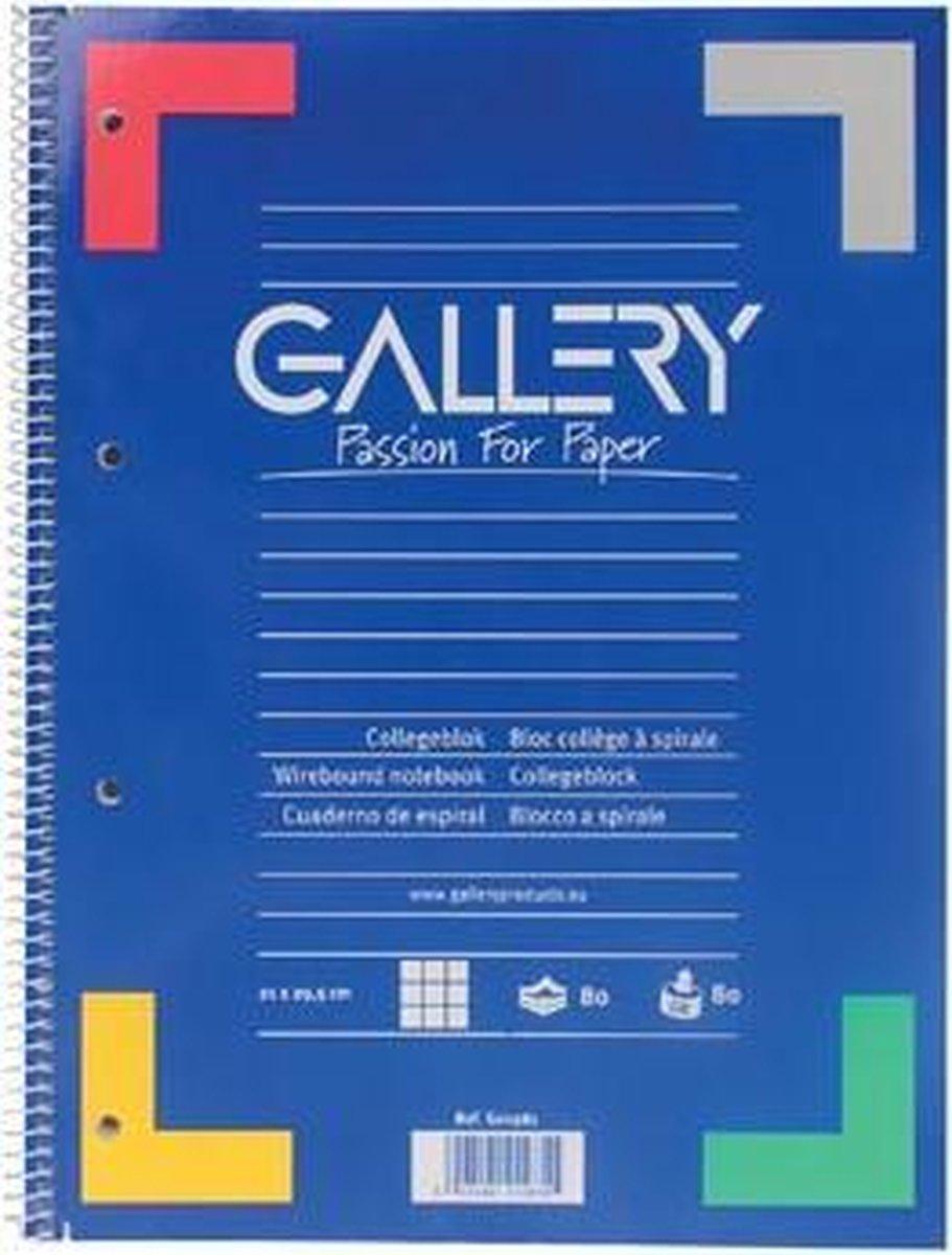 Gallery spiraalblok formaat A4 geruit 5 mm 80 vel