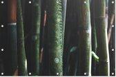 Bamboe   Natuur   Tuindoek   Tuindecoratie   90CM x 60CM   Tuinposter