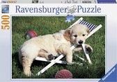 Ravensburger puzzel Golden Retriever - Legpuzzel - 500 stukjes
