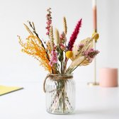 Bloomposy | Droogbloemen | Dried flowers | Gedroogde bloemen | 30cm |