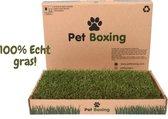 Hondentoilet - Puppy Training Pad - Zindelijkheidstraining - Biologisch - 60 x 40 cm