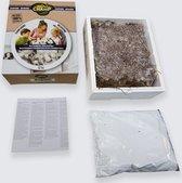 Thuiskweekpakket Bruine Champignon 7.5 Ltr