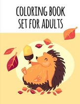 coloring book set for adults