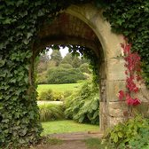 Tuinposter| Doorkijkje in groene tuin 100cm x 100cm– Tuinposter voor buiten / buitencanvas/ spandoek / tuinschilderij (tuindecoratie) + ringen om de 50cm