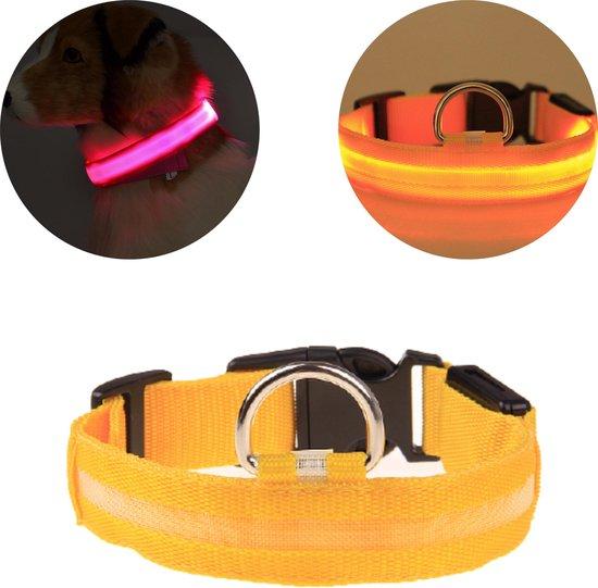 Lichtgevende Halsband Hond – LED Halsband – Verlichting hond – Hondenhalsband Puppy - Halsbandjes voor puppys – Geel - L