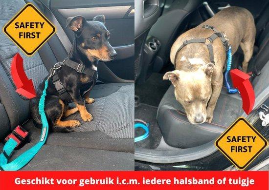 Autogordel voor honden - blauw - voor optimale veiligheid onderweg voor hond en baasje - schok absorberend - hondengordel - voor alle honden - bestand tegen grote krachten - geschikt voor bijna alle auto's