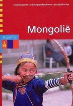Te Gast In Mongolie
