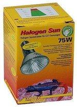 Lucky Reptile Halogen Sun - 75W