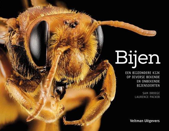Bijen - Sam Droege | Readingchampions.org.uk