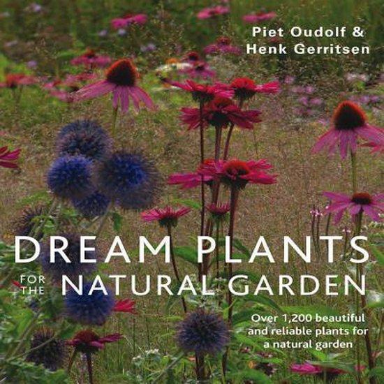 Boek cover Dream Plants for the Natural Garden van Piet Oudolf (Paperback)