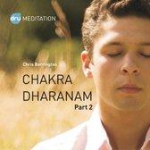 Dru Yoga - Chakra Dharanam (part 2) - Meditation through the chakras