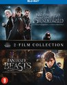 Fantastic Beasts and Where to Find Them & Fantastic Beasts: The Crimes of Grindelwald (Blu-ray)