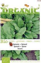 Buzzy® Organic Spinazie Securo (BIO)