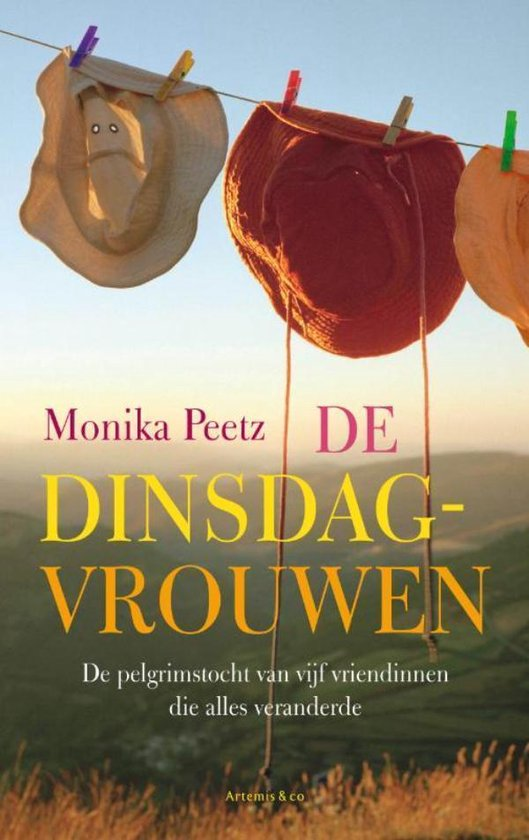 Boek cover De dinsdagvrouwen van Monika Peetz (Onbekend)