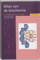 Sesam atlas van de biochemie