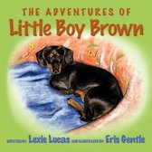 The Adventures of Little Boy Brown