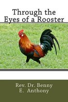 Through the Eyes of a Rooster