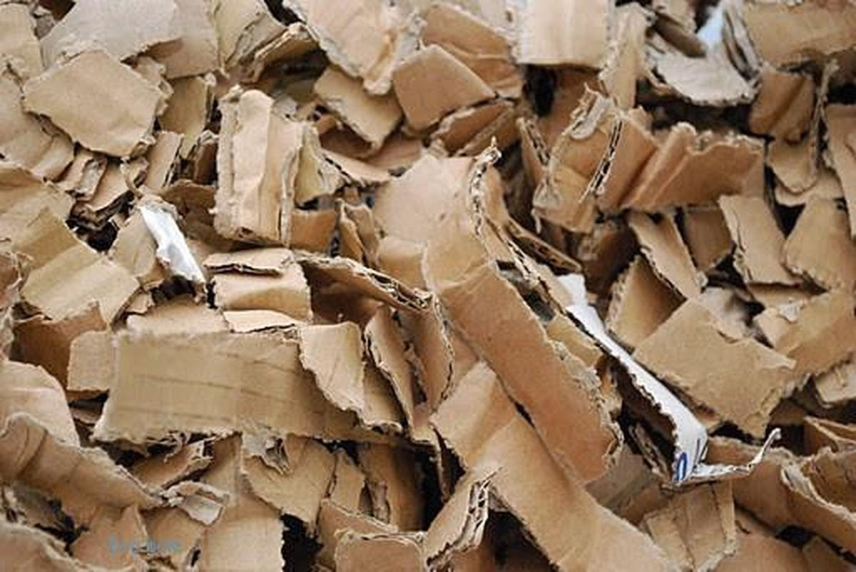 Ecobale bodembedekking - stofvrij - karton - 20 kg