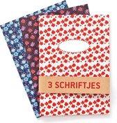 Schriften A5 Kleurrijk - 3 stuks