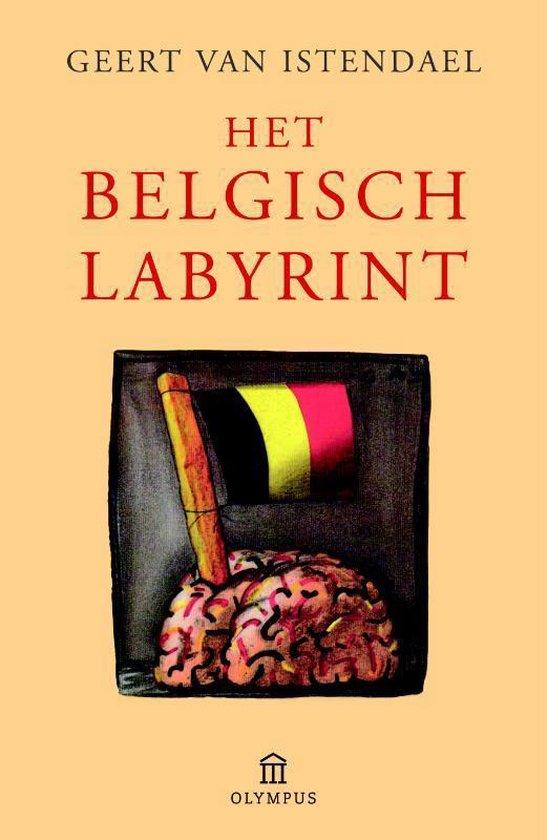 Het Belgisch labyrint - Geert van Istendael pdf epub