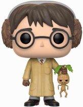 Funko Pop! Harry Potter Harry Potter - #55 Verzamelfiguur