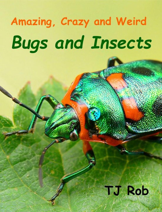 Amazing, Crazy and Weird Bugs and Insects