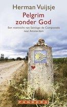 Boek cover Pelgrim zonder god van Herman Vuijsje