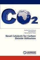 Novel Catalysts for Carbon Dioxide Utilization