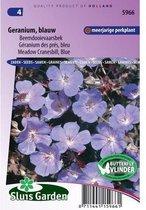 Sluis Garden - Geranium Blauw (Beemdooievaarsbek)