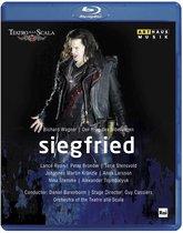 Siegfried, Milaan 2012, Br