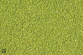 Aquagrind Decoflint - Bodembedekking Aquaria - 3-5 mm - 1 kg - Groen