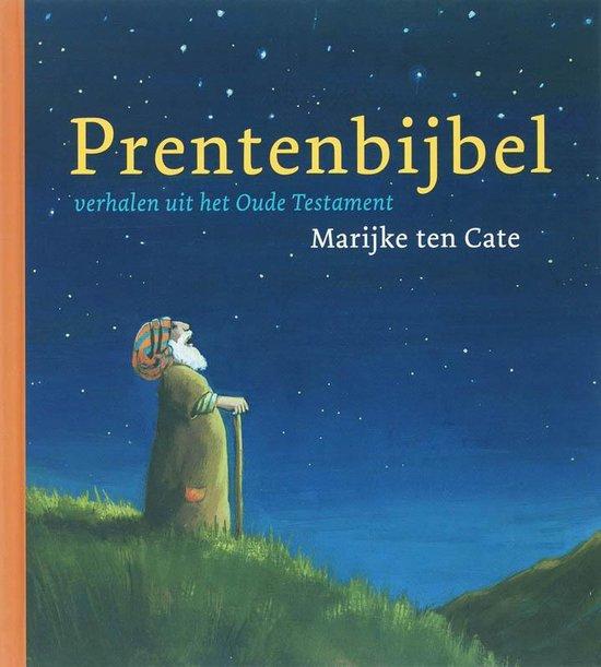 Prentenbijbel - Liesbeth van Binsbergen |