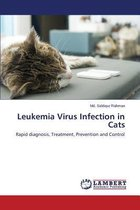 Leukemia Virus Infection in Cats