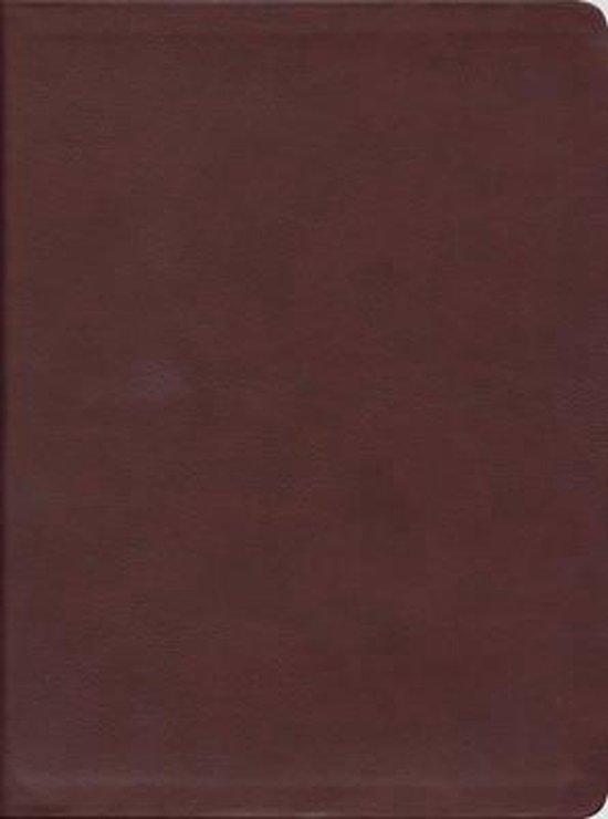 Message Bible - Eugene Peterdsen pdf epub