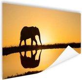 Silhouet olifant bij zonsondergang Poster 60x40 cm - Foto print op Poster (wanddecoratie)
