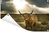 Harige Schotse hooglander met zonnestralen Tuinposter 120x80 cm - Tuindoek / Buitencanvas / Schilderijen voor buiten (tuin decoratie)