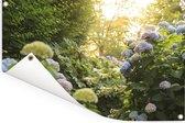 Gele hortensia's in de tuin Tuinposter 60x40 cm - klein - Tuindoek / Buitencanvas / Schilderijen voor buiten (tuin decoratie)
