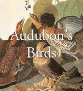 Audubon's Birds (Mega Squares)
