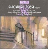 Canti Di Salomone