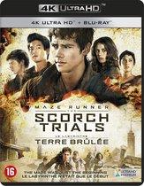 Maze Runner: Scorch Trials (4K Ultra HD Blu-ray)