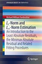 L1-Norm and L∞-Norm Estimation