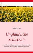 Boek cover Unglaubliche Schicksale van Bruno Eschke