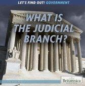 Boek cover What Is the Judicial Branch? van Amelie Von Zumbusch (Onbekend)